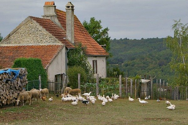 small farm in france